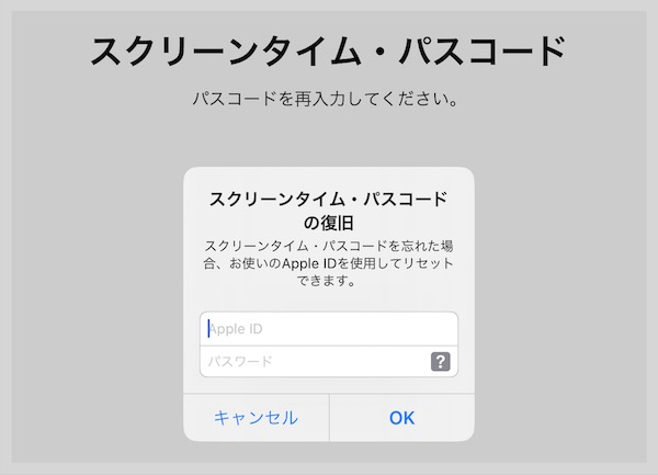 iPadスクリーンライムパスコード