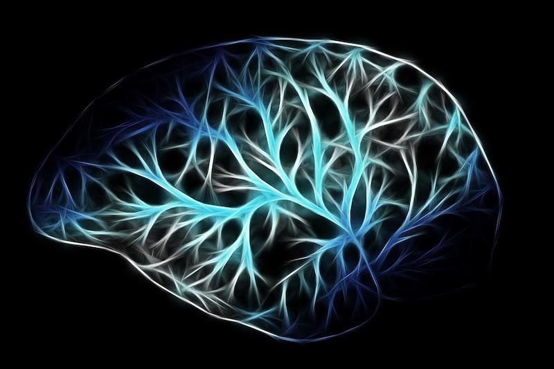 ミラーニューロンと子育て